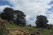 Randonnée dans la région de Tannourine- Kfour el Aarbeh-Niha