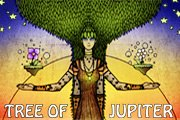 Tree Of Jupiter - Prints & Body Art @ Green Festival