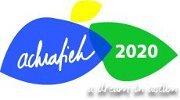 LSA pop-up skate park @Achrafieh 2020 (car free day)