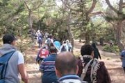 Hiking from 3imar Forest to Bchinnata to Ehden Reserve with the Footprints Nature Club