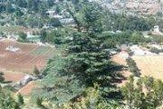Trip 292: Hiking in Jurd Njass, Donniyeh with footprints