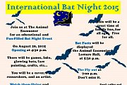 International Bat Night 2015 - Lebanon
