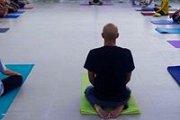 Yoga Workshop for Beginners with Yalda Younes