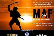Martial Arts Festival - MAF 2015
