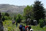 Hiking Tannourine Forest Reserve with ProMax