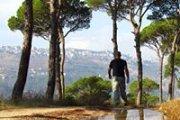 """""""Rush of pine scent..."""" Hiking Btebyat"""