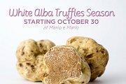 White Alba Truffles at Mario e Mario