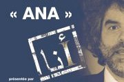 ANA by Joe Kodeih - Fundraising for Include Association