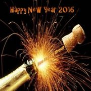 Happy New Year 2016 with Bee Happy