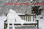 LOVE IS IN THE ... SNOW - Overnight & Skidoo