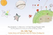 The Little Pupil - Creative Stories and Expressions From the Pediatric Oncology
