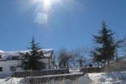 Sannine Snowshoeing with VT