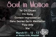 Soul in Motion: healing through movement