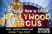 Hollywood Circus in Saida