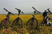 Al Khiam Bike Ride