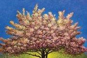 Art in Blossom