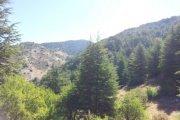 Arz el Chouf hiking
