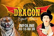 Dragon Circus: Expect Xtreme