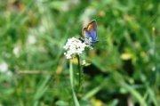Ehmej Hiking Trip by Blue Carrot Adventures & I-HIKE