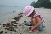 Clean Batroun Coast with Jannat Bladi Foundation