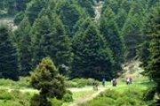 Hiking At Ammouaa-Akkar with HighKings961