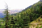 Ehden Reserve with Wild Adventures