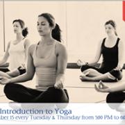 Beginners' Yoga program