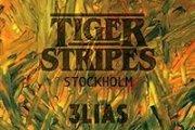 Tiger Stripes at Projekt