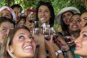 Wine Tour with Vamos Todos