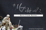 Mary's White Veil   Born from Ruins - Christmas Arrangements