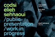 Codsi Elieh Sehnaoui - public presentation - work in progress