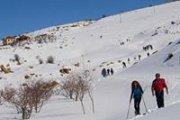 Snowshoeing Laqlouk with Wild Adventures
