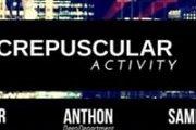 Crepuscular Activity