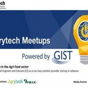 Berytech Meetups Powered by GIST - January 2017 Edition