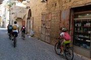 Discover Saida by Bike