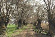 Aammiq Wetlands Ride