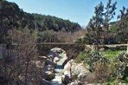 Hiking & Yoga in the beautiful Chouf - Jesr El Khadi with Sarvam Yoga