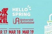 Hello Spring! Souk E lAkel Special Spring Edition