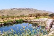 Hiking in the fields of Kfarmishki with GREEN STEPS and Wine Tas