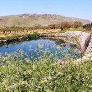 Hiking in the fields of Kfarmishki with GREEN STEPS and Wine Tas
