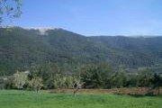 Qabr Chmoun Hiking with Baldati