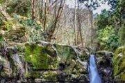 Baakline Waterfalls Hike with GREEN STEPS