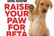 Raise Your Paw For BETA