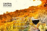 Discover Spain - wine cheese and nibbles