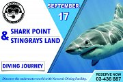 Shark Point & Stingrays Land_ Diving Journey