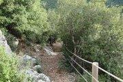 Benteal Reserve,  Kfarmasoun Hiking with Vamos Todos