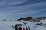 Snowshoeing Tannourine Reserve
