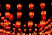 Chinese Baijiu Night