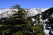 TALK / LAUNCHING: 2013 Mountains of Lebanon Calendar