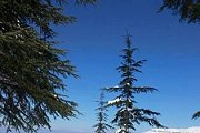 B2h Snowshoeing to Arz Hadath el Jibbeh with Born2hikers